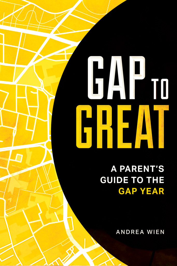 GAP_TO_GREAT_BOOK_COVER_AndreaWien
